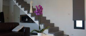 escalier_azam_albi