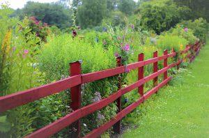 cloture jardin